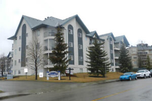 2BR condo near West Edmonton Mall in Terra Losa
