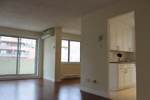 Downtown,Centre Ville,University,2,bedrooms,chambres,McGill,41/2