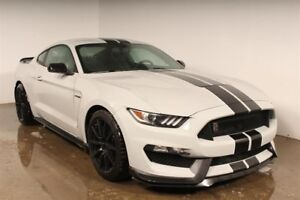 Ford Mustang Fastback Shelby GT350 2017