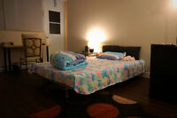 prefect for McGill/ Concordia_roommate wanted_3 1/2 DT_reduced $