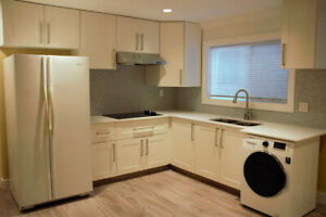 2 Bedroom Suite in Vancouver (Near 29th Ave Skytrain Stn)