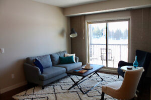 ISO: Roommate for a Fully-Furnished Condo (105 St & 56 Ave)