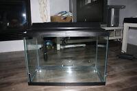 aquarium en excellent état à vendre!