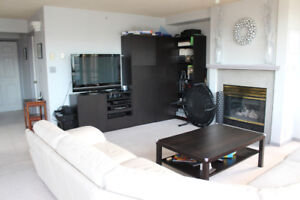 Room For Rent By Science World | Beautiful!