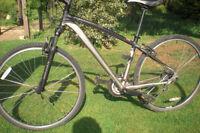 STOLEN Specialized Women Hybrid bike