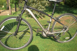 STOLEN Specialized Women Hybrid bike Cambridge Kitchener Area image 1