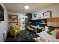 Spacious En-suite Studio Apartment Students Cambridge