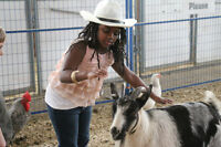 Mobile Petting Zoo, Birthday Packages Indoor Facility