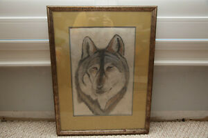 Charcoal or Pencil Sketch of a Wolf