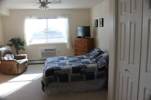 Fully Furnished Studio Suite Strathcona County Edmonton Area image 3