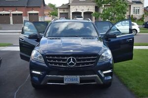 2013 Mercedes-Benz M-Class SUV, Crossover