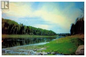 125 Acres, 665 foot river frontage, 3 natural springs!!