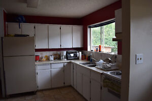 5 Bed 2 Bath in Gold River Campbell River Comox Valley Area image 4