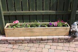 Planters garden furniture pots planter ornaments window planter Loughview Joinery
