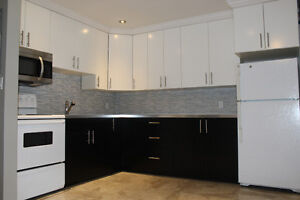 Completely renovated one bedroom apt. available July 1