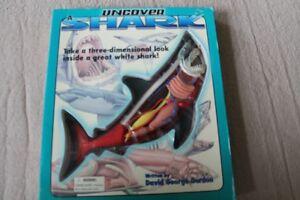 3 D SHARK BOOK