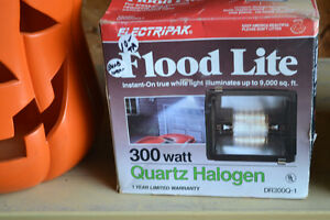 Flood Lite Light - 300 Watt - BRAND NEW w/ original box $10 firm Windsor Region Ontario image 1