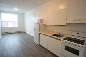 Downtown 1 bedroom apartment for rent