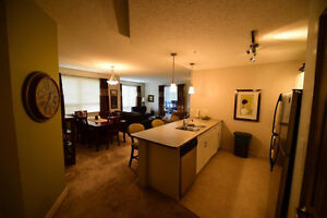 Luxury Fully Furnished Condo - Timberlea