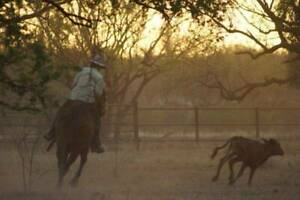 Station hand for NT Contract Mustering Team