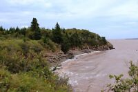 61.5 gorgeous acres WATERFRONT on Bay of Fundy NB! Oceanfront.