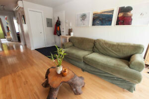 Spacious 5 1/2 in St-Henri - July 1st (2 Rooms available)
