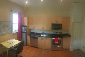 Bright Studio Apartment for Rent - South End Halifax (Sept 1st)
