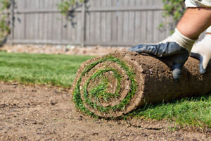 Landscaping & Lawn Care Packages - Get ready for Spring & Summer