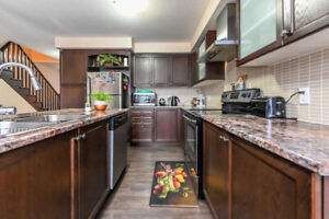 Stunning 3 B/R Freehold T/House In Stoney Creek Area Of Hamilton