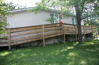 spruce and pressure treated wood. You must dismantle ramp