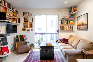 Pets OK + Parking - Cozy renovated apartment in Mt. Pleasant