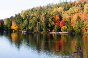 Photography Sale at Stoney Creek Pumpkinfest Saturday, Oct. 13th