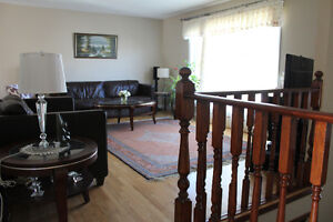 Spacious renovated bi-level house- Available July 1st