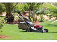 Gardener, Garden maintenance, Grass cutting, Mowing, Rubbish removal, Gardening
