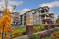 #423 850 Saucier Ave. - Super Location in the Heart of Kelowna!!