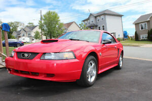 2004 Ford Mustang v6 (ALL ORIGINAL 50,000 kms)