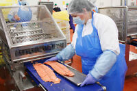 General Labour - Fish Processing in Leamington Area