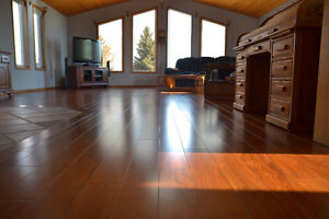 Potential Buyers and Sellers: Need work done on your home?