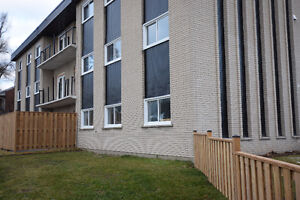 Must See Renovated top to toe 2 Bed Suites  insuite Laundry Kitchener / Waterloo Kitchener Area image 8