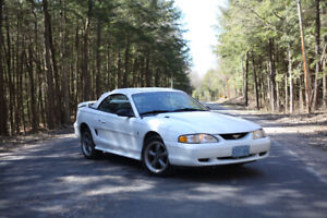 1995 Mustang Convertible - Perfect Summer Car