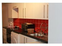 MODERN ONE BED CENTRAL FLAT TO RENT - CENTRAL PLYMOUTH