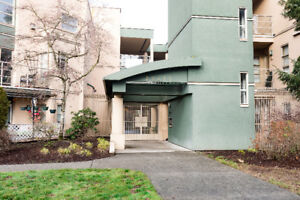 1 Bed/1 Bath Updated unit with High Ceilings in Maple Ridge