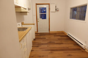 31/2 MONTREAL DOWNTOWN, $860; Dec 1st, (514) 605 - 1262