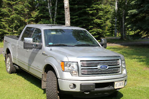 2012 Ford F-150 4X4 Platinum Pickup Truck
