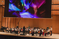 **** Looking for musicians for new orchestra ****