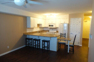 Clean upgraded Condo For Rent