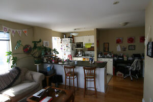 Bright 1 bdrm with large terrace for June 1st | South End