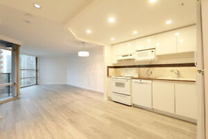 Spacious downtown Vancouver luxury condo