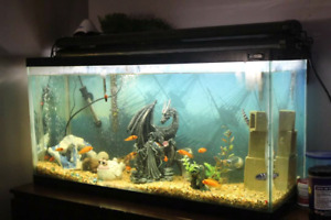 Fish tanks for trade