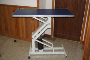 Grooming table - Table de toilettage